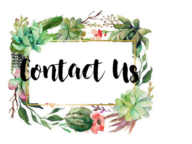 contact-us-new